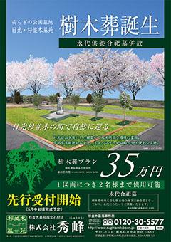 樹木葬チラシ表240
